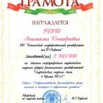 StudZimaBrestDipl2014-03