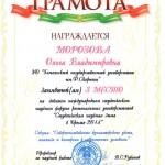 StudZimaBrestDipl2014-05